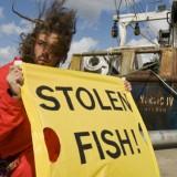 Greenpeace-aktivister protesterar 2008 i Göteborg mot det svenska fisket i västsahariskt vatten. Fotograf: Christian Åslund