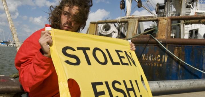 Greenpeace-aktivister protesterar 2008 i Göteborg mot det svenska fisket i västsahariskt vatten. Fotograf: Greenpeace