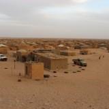 Flyktinglägren i Algeriet. Bild: Lena Thunberg