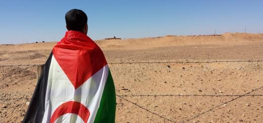 Vid den Marockobyggda muren, som delar Västsahara i två delar. Bild: Emmaus Björkå