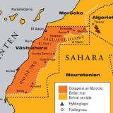 Vid FN: klimatkonferens i Marrakesh i november presenterar sig Marocko som ett land med grön energi. Men  sol och vind står ockuperade Västsahara för till stora delar.